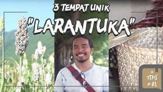 Jurnal Indonesia Kaya: 3 Tempat Unik Larantuka